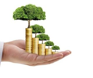 financial management 3.jpg